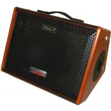 Amplificatore portatile a batteria  per chitarra elettrica, chitarra acustica, tastiera   GIPSY8